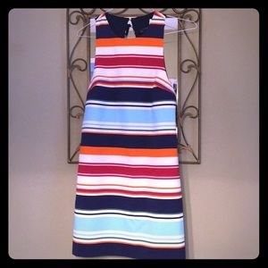 New w/ Tags Zara Trafaluc Collection Dress